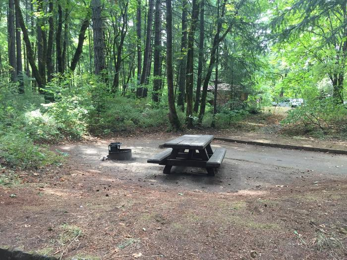 Fire Ring and Picnic TableSite #11-Wyeth C.G.
