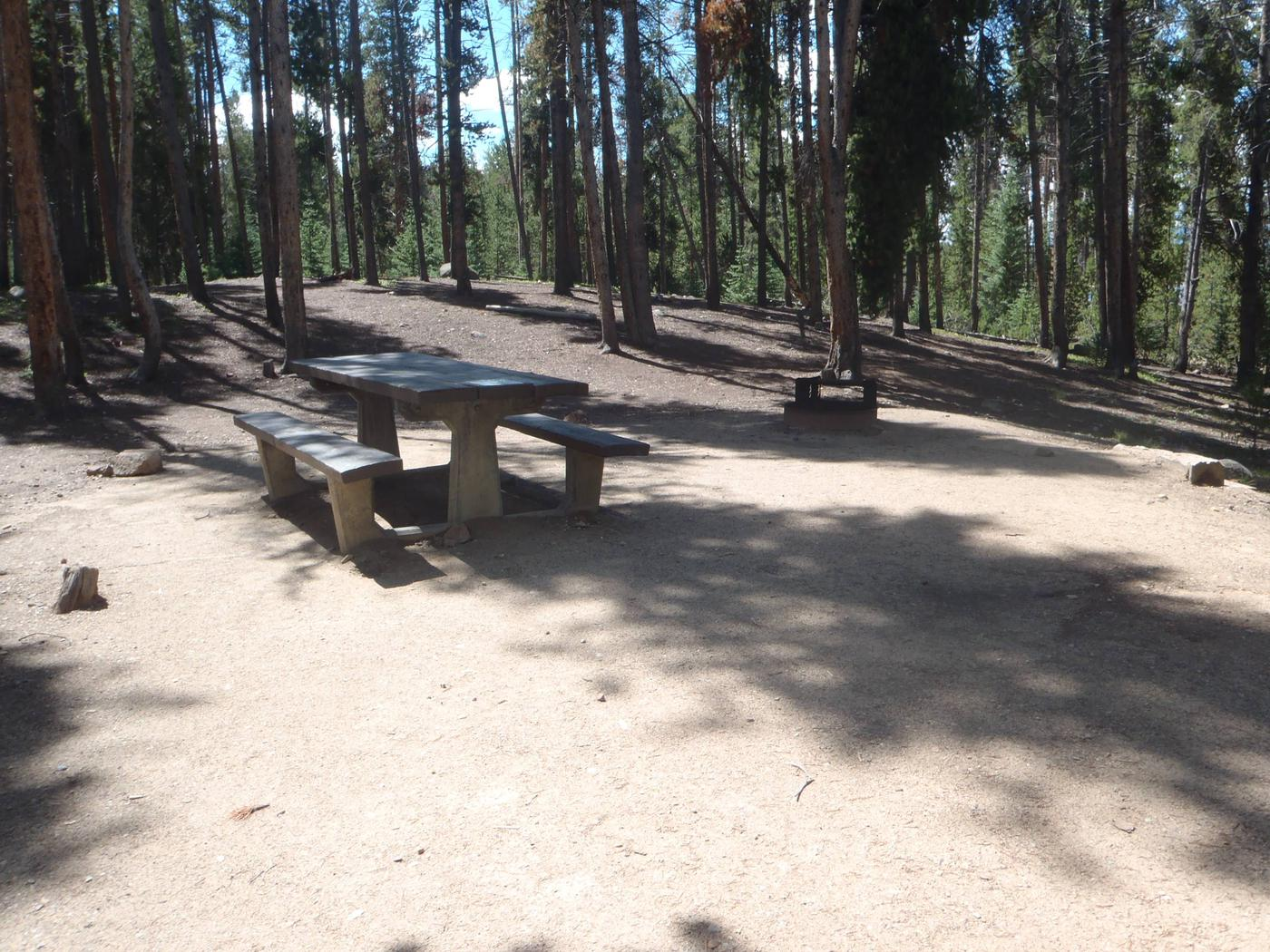 Baby Doe Campground, Site 2 picnic table and fire ring