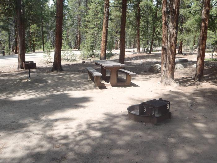 Father Dyer Campground, Site 20 picnic table and fire ring