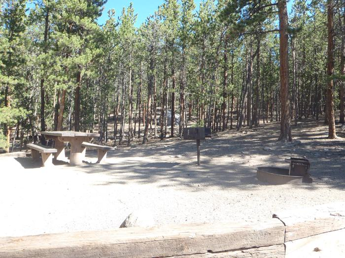 Lakeview Campground, site C1 picnic table and fire ring