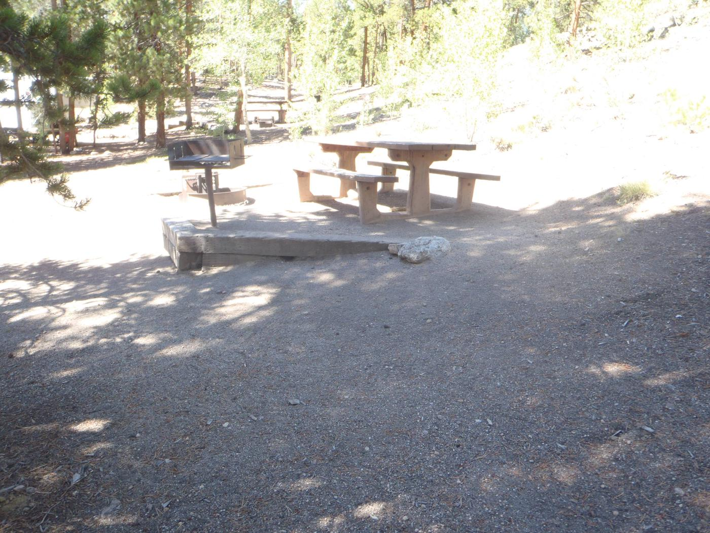Lakeview Campground, site C4 picnic table and grill