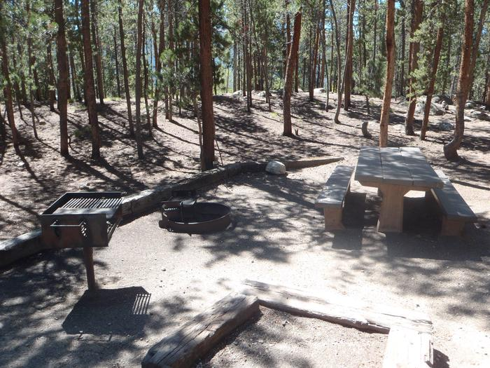 Lakeview Campground, site C7 picnic table and fire ring