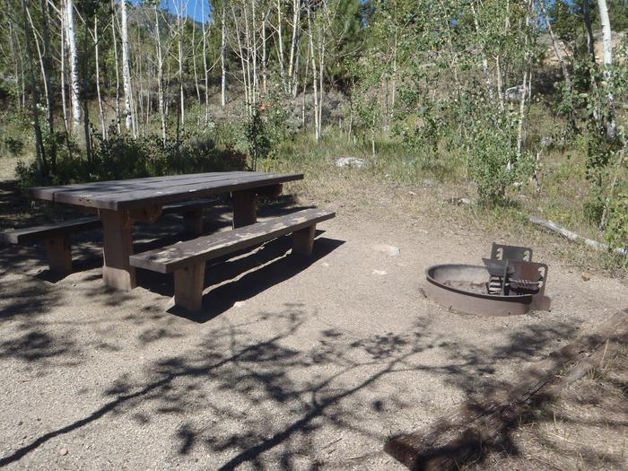 Lakeview Campground, site D1 picnic table and fire ring 2