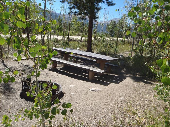 Lakeview Campground, site D1 picnic table and fire ring
