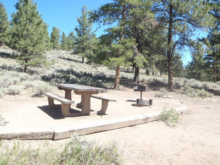 Lakeview Campground, site D6 picnic table and fire ring 2