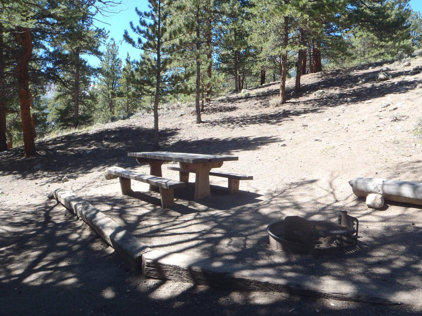 Lakeview Campground, site F5 picnic table and fire ring
