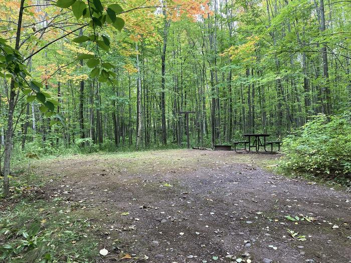 Site 31 gravel spur, picnic table and fire ringSite 31