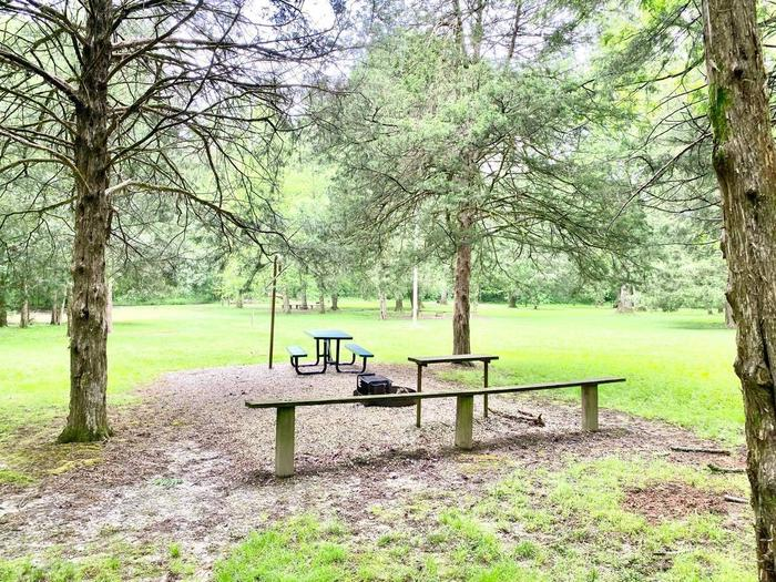 Tailwater Site 49