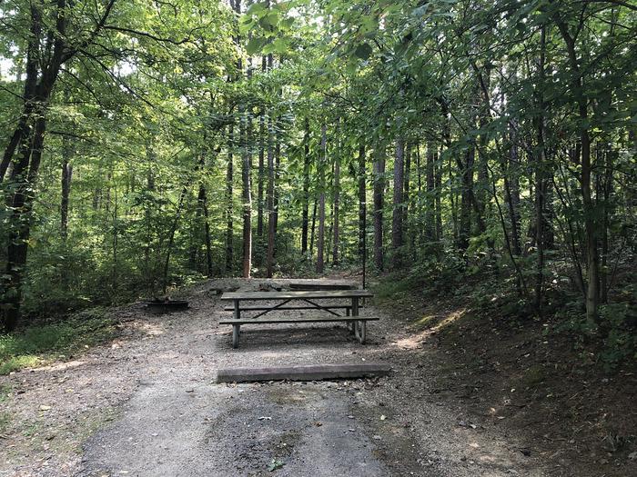 Site 14 Northface