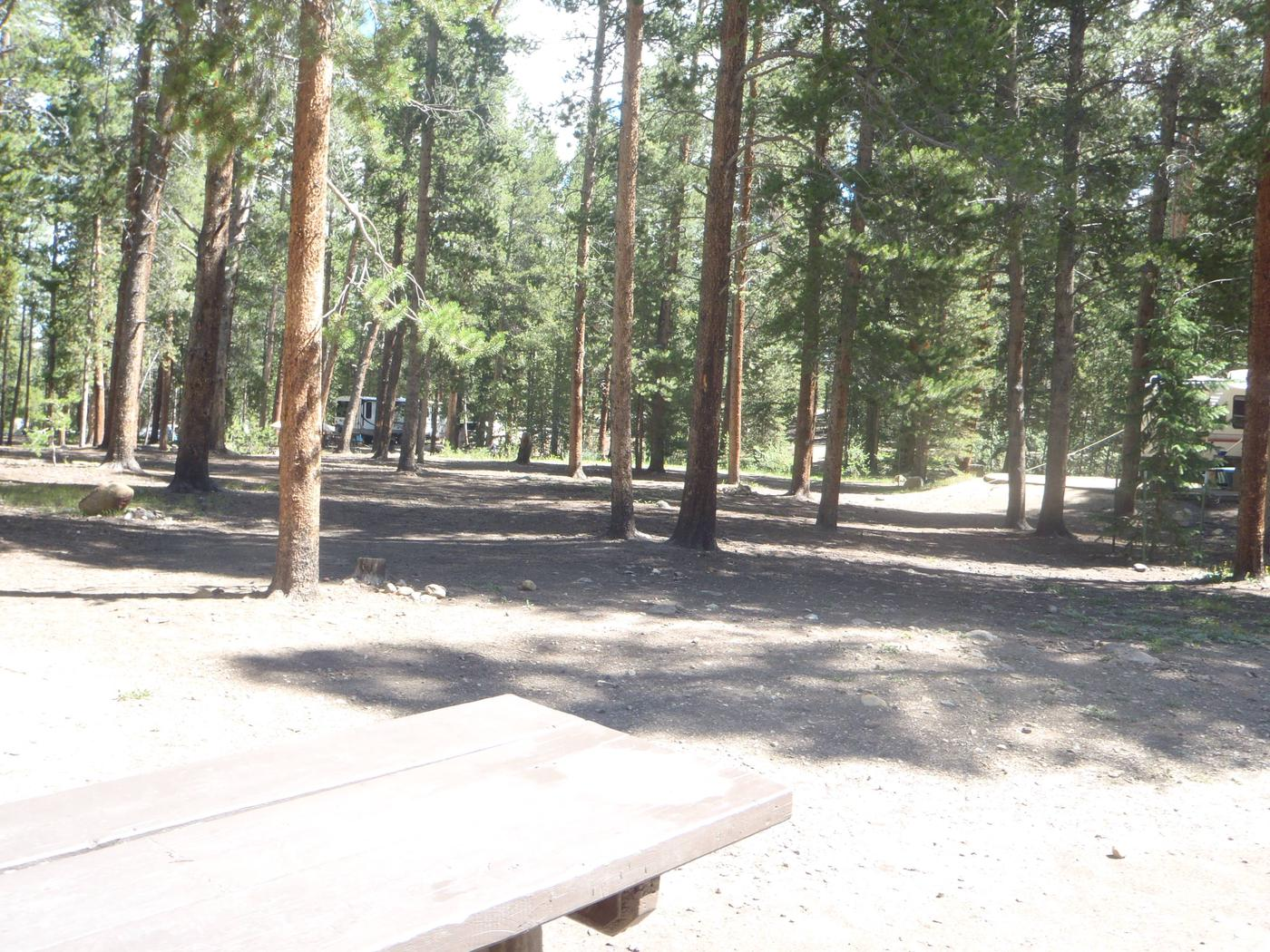 Molly Brown Campground, site 19 view
