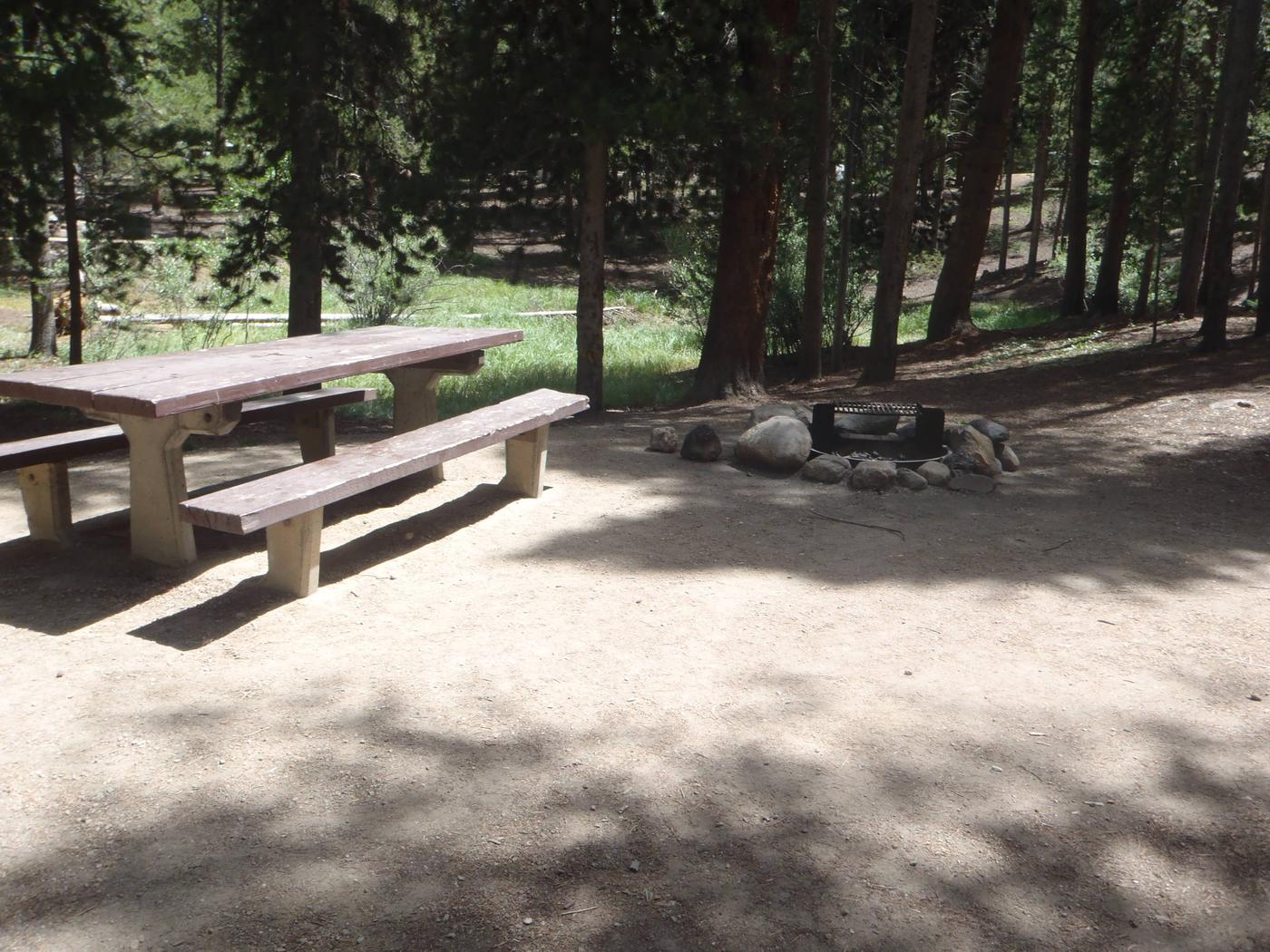 Molly Brown Campground, site 20 picnic table and fire ring 2