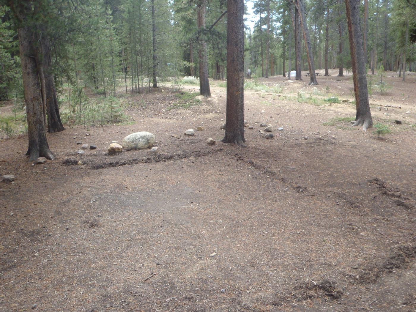 Molly Brown Campground, site 24 clearing