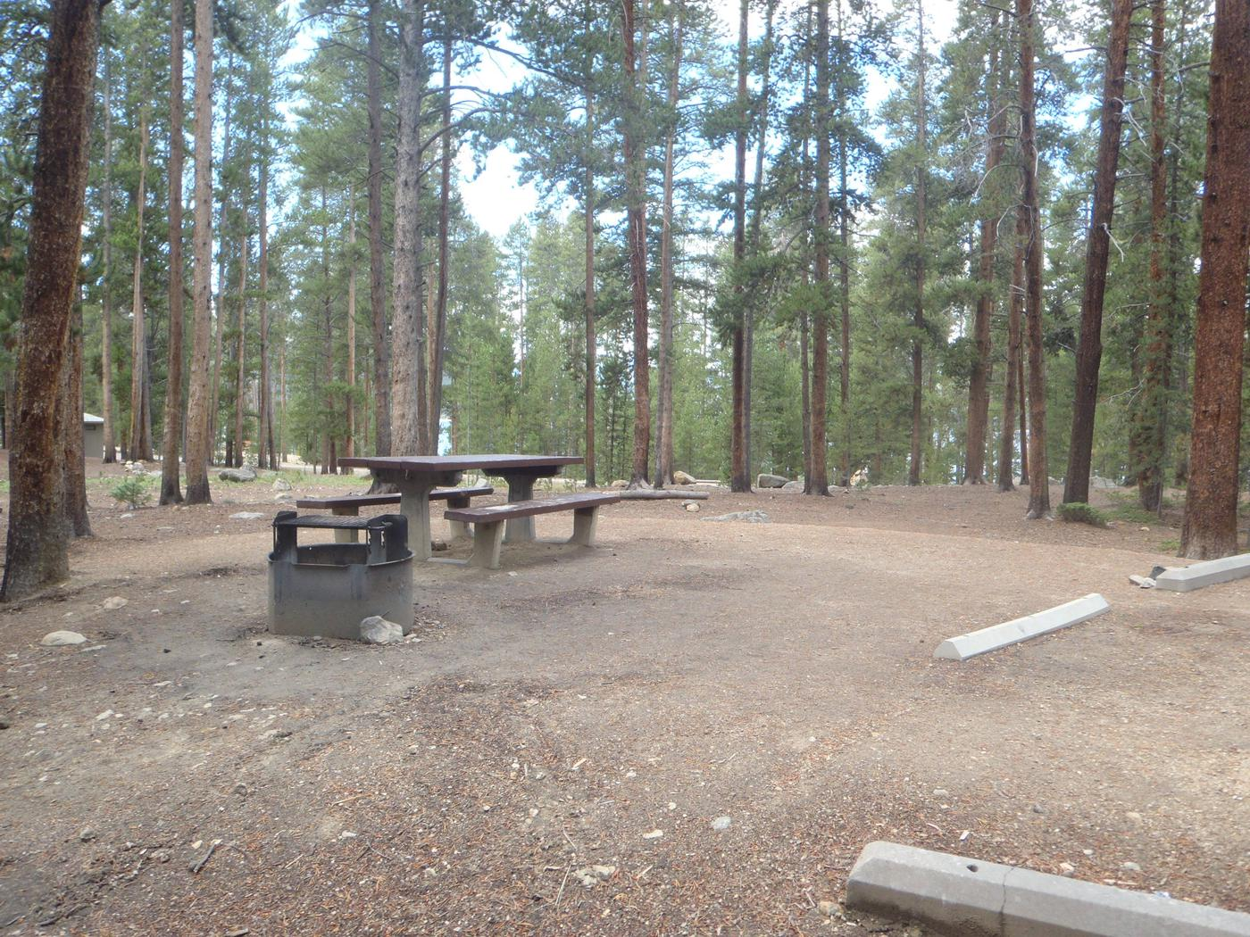 Molly Brown Campground, site 24 picnic table and fire ring 4