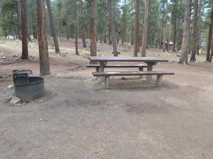 Molly Brown Campground, site 24 picnic table and fire ring 3