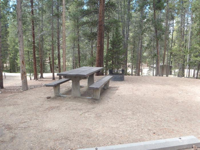 Molly Brown Campground, site 26 picnic table and fire ring 3