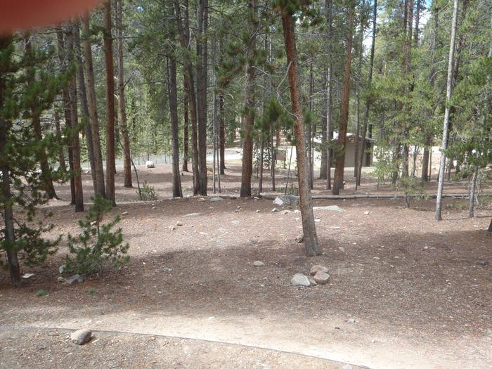 Molly Brown Campground, site 26 clearing