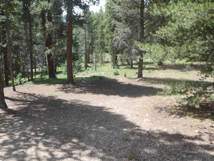 Molly Brown Campground, site 41 clearing