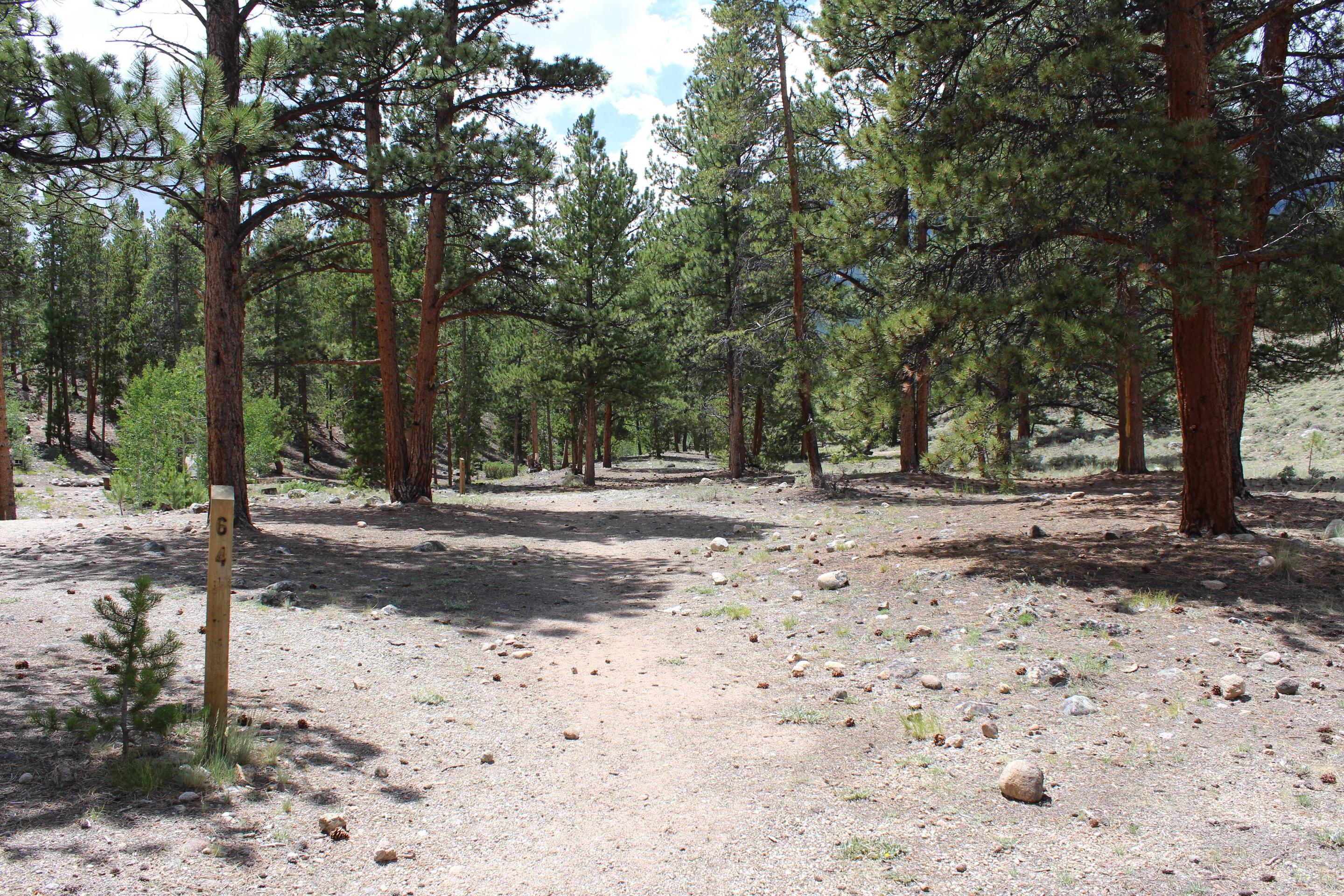 White Star Campground, site 64 view