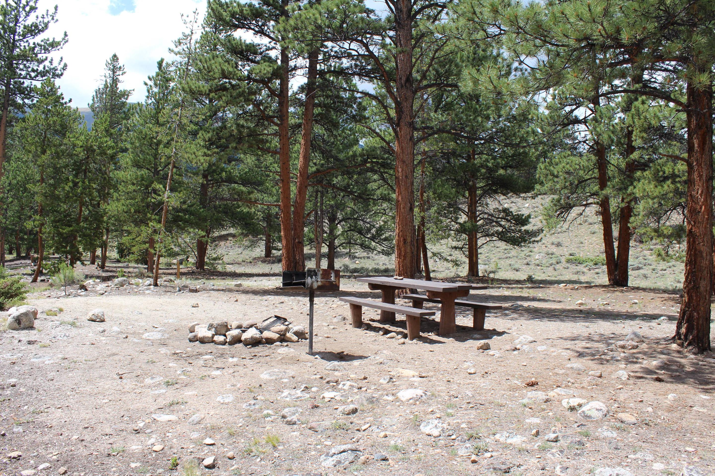 White Star Campground, site 64 picnic table and fire ring