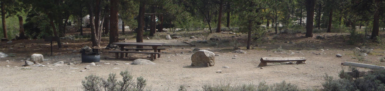 White Star Campground, site 61 White Star Campground, site 61