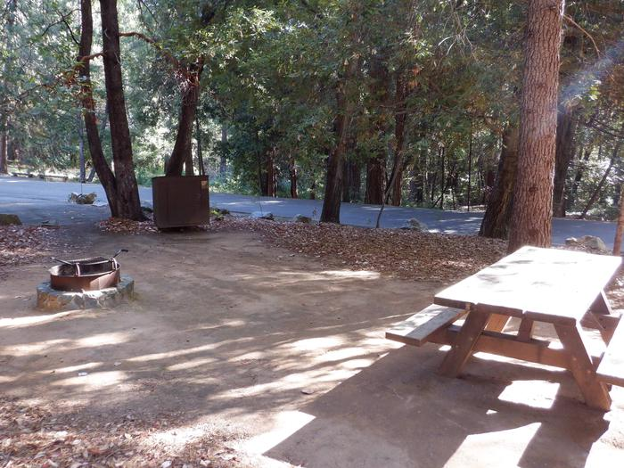 18Fire ring, Bear box and Picnic table.