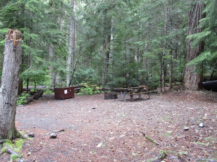 Picnic Table, Fire ring, and Bear box