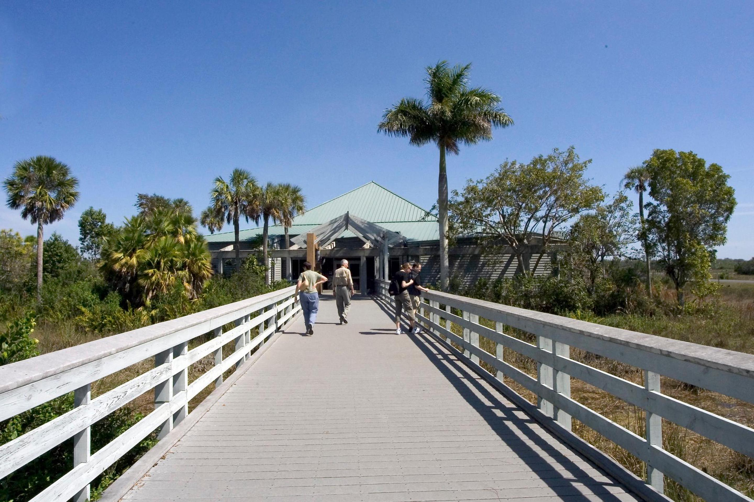 Walkway to the Ernest Coe Visitor Center EntranceAn elevated walkway to the Entrance of the Ernest Coe Visitor Center highlights the flora of Everglades National Park
