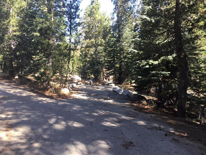 44 foot driveway, good access44 foot driveway, good access