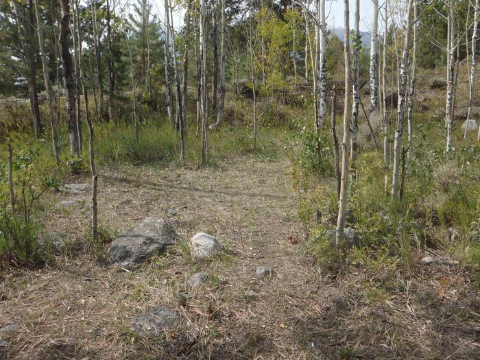 Lakeview Campground, site D1 clearing 2