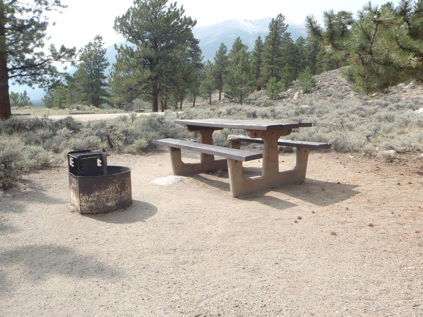Lakeview Campground, site E10 picnic table and fire ring 2