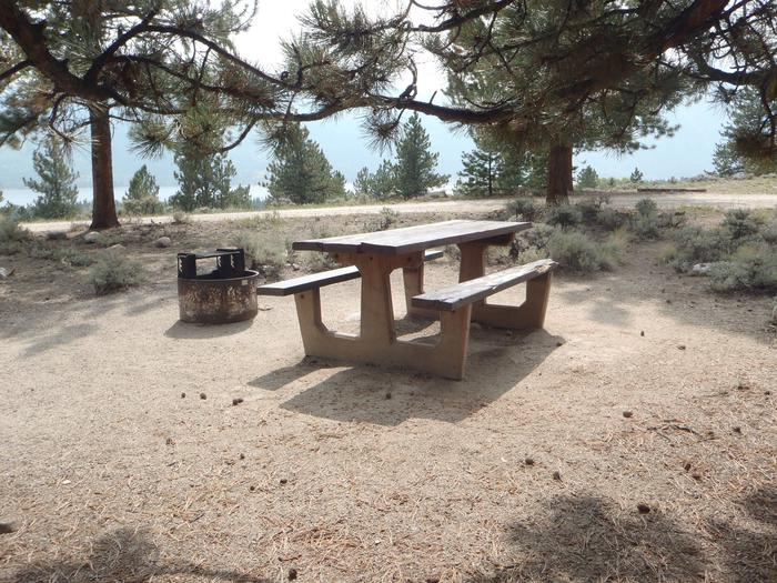 Lakeview Campground, site E10 picnic table and fire ring