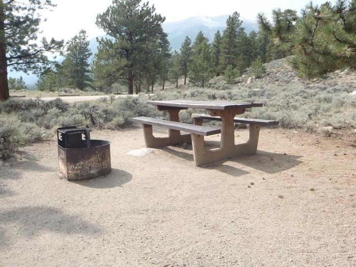 Lakeview Campground, site E10