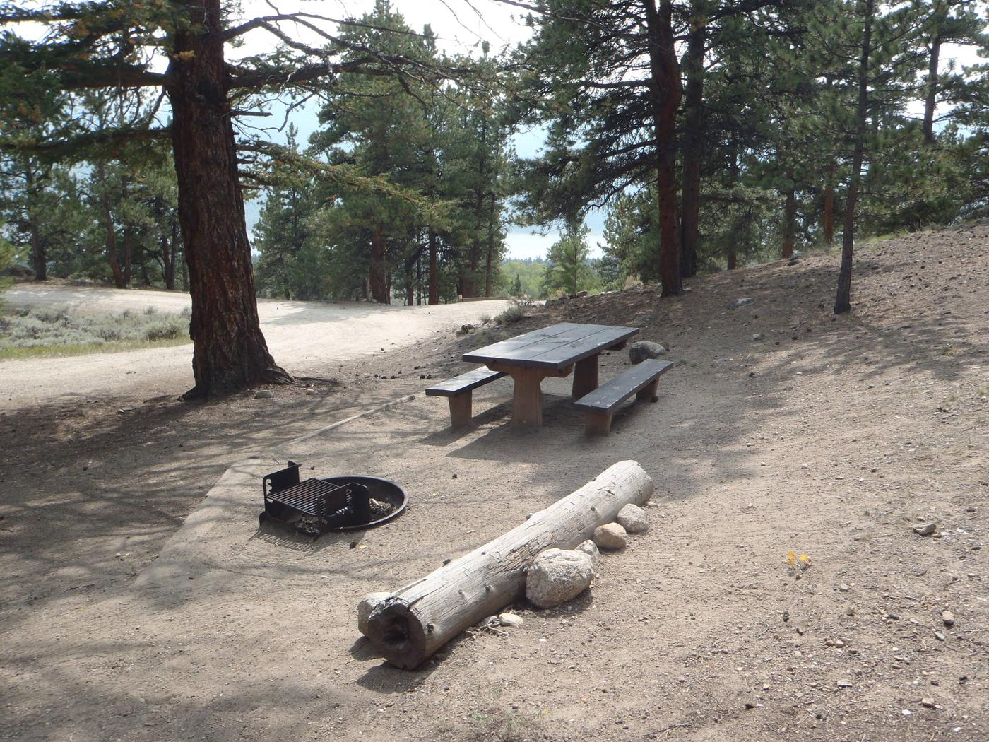 Lakeview Campground, site F5 picnic table and fire ring 3