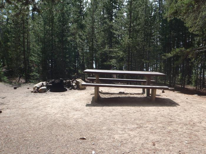 Baby Doe Campground, site 4 picnic table and fire ring