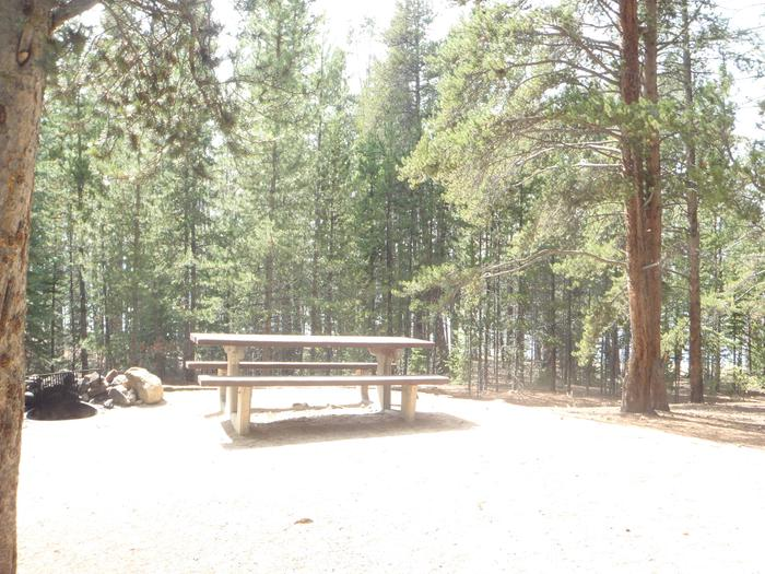 Baby Doe Campground, site 4 picnic table and fire ring 2