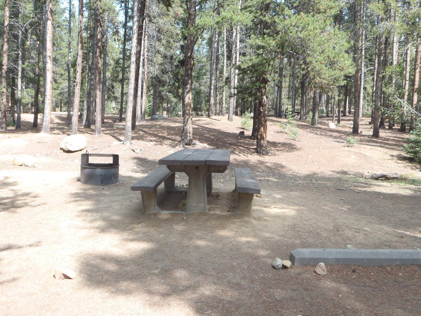Baby Doe Campground, Site 5 picnic table and fire ring