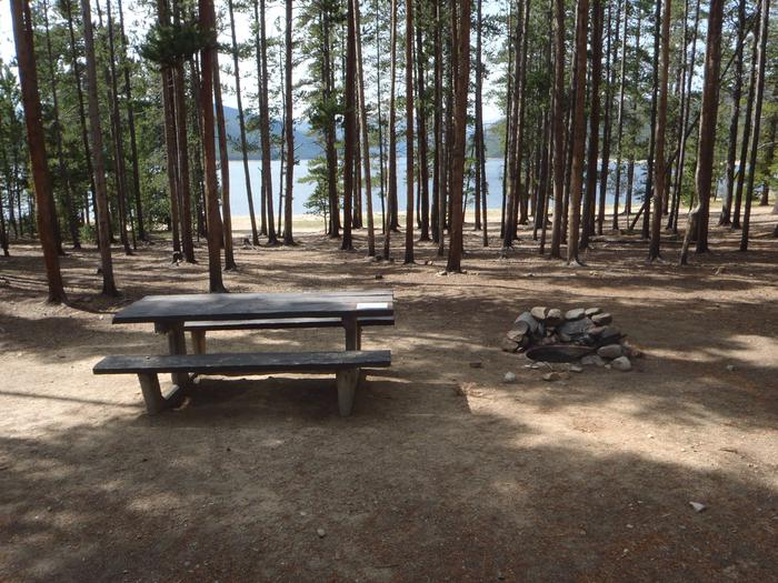Baby Does Campground, Site 6 picnic table and fire ring