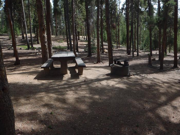 Baby Does Campground, Site 32 picnic table and fire ring