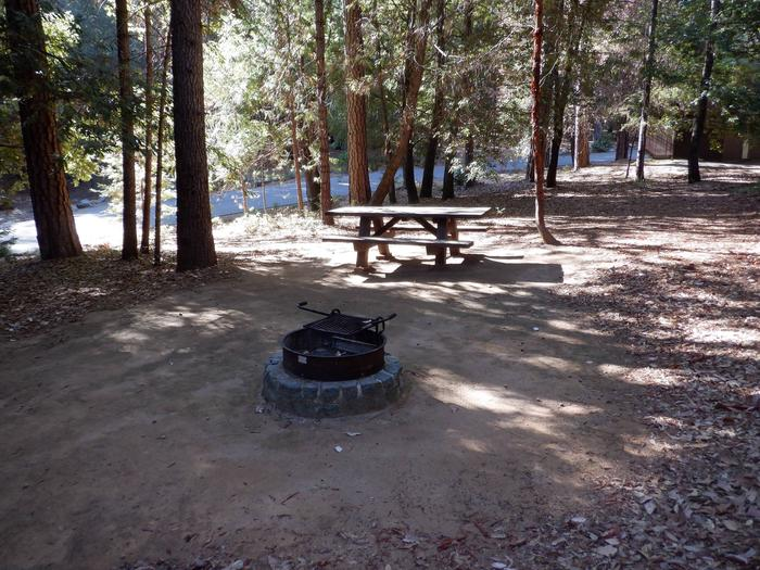 Site 18 Table and fire ring