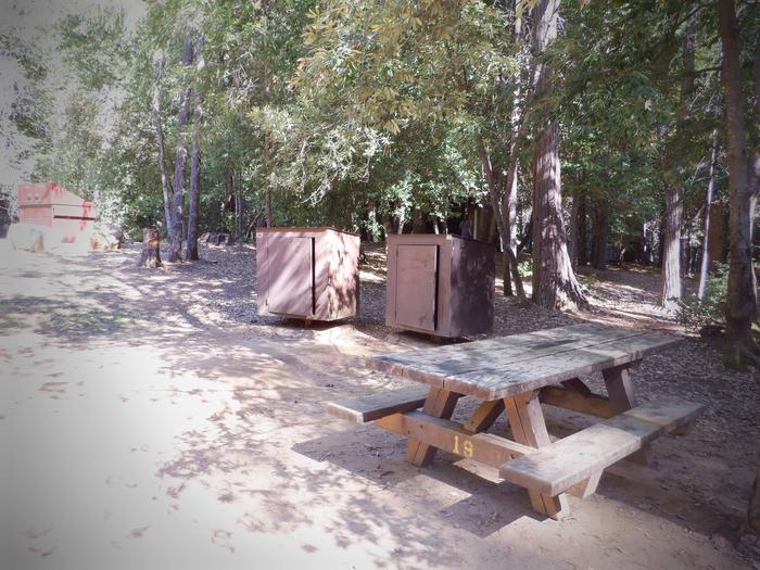Site 19DTable and Bear Boxes