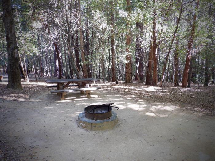 Campsite 20Table and Fire Ring