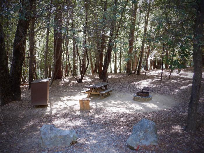 Campsite 21Bear box, Table, Fire ring