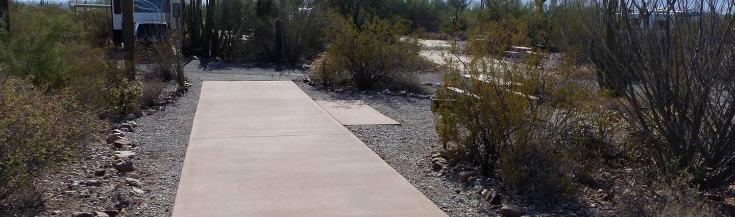 Pull-thru campsite with picnic table and grill, cactus and desert vegetation surround site.  Site 003