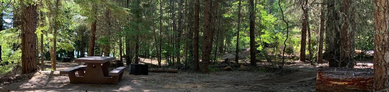 Site 37