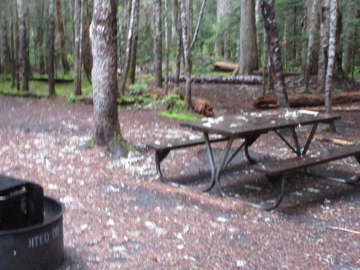 picnic table, bear box, and fire pit