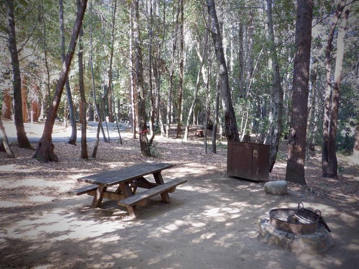 Site 23Table, Bear Box and Fire Ring