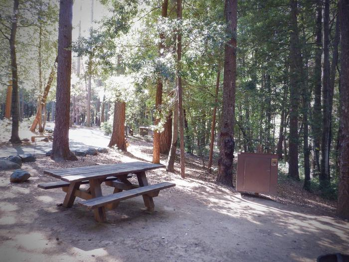 Site 24Table and Bear Box