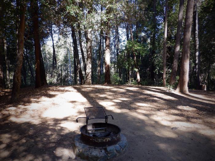 Campsite 24Tent Pad