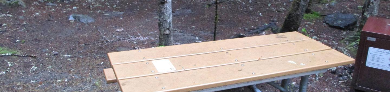 Picnic Table and Bear Box