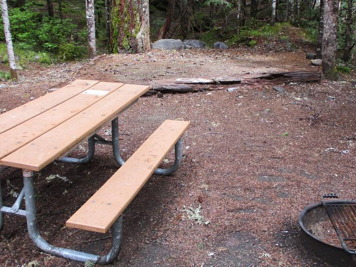 Picnic Table and Tent Pad